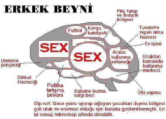 betaald sex chatbox sex
